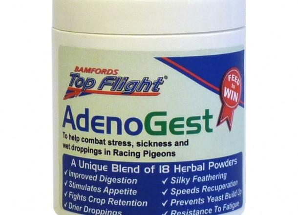 AdenoGest