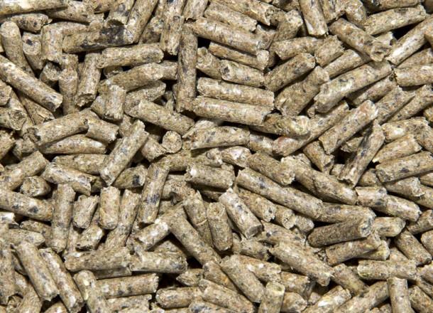 Resultado de imagen para rabbit pellets